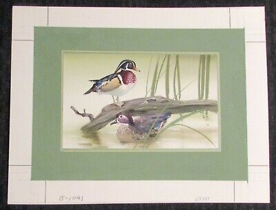 BIRTHDAY Beautiful Painted Ducks 2pcs 10x8  Greeting Card Art #1041 W/ 1 Card • 34.50£